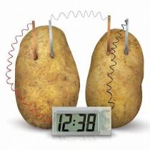 Experimento Potato Project Clock verde nuevo Kit Ciencia Kids Lab Toy Home School