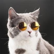 Gafas de sol con Monturas de Metal para Mascotas
